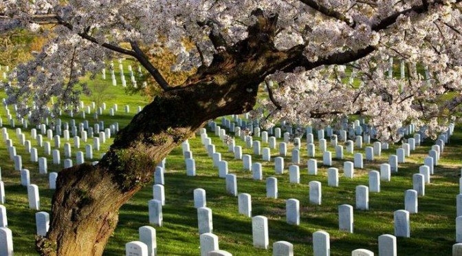 Memorial Day 2021: Battle for the Promised Land